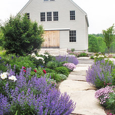 Contemporary Landscape by Ann Kearsley Design