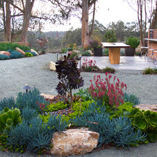 Contemporary Landscape by All Seasons Gardening and Landscaping