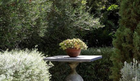Dream Spaces: A Secret Garden of Your Own