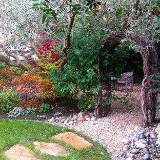 Cette photo montre un jardin éclectique l'automne avec une exposition ombragée et du gravier.