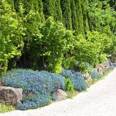 Eclectic Landscape by Brooks Kolb LLC Landscape Architecture