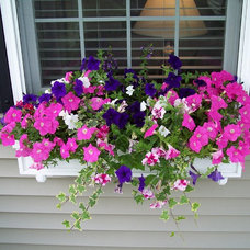 Traditional Landscape Window Box
