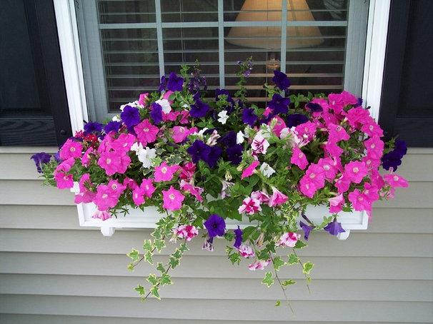 Traditional Landscape Window Box