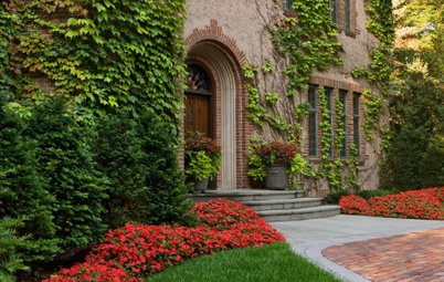 5 Ways to Plant a Big Kiss of Red on Your Landscape