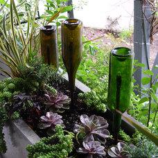 Contemporary Landscape by Lenkin Design Inc: Landscape and Garden Design