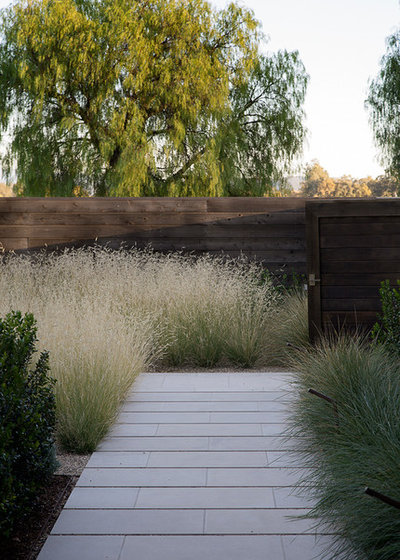 Transitional Garden by Andrew Mann Architecture
