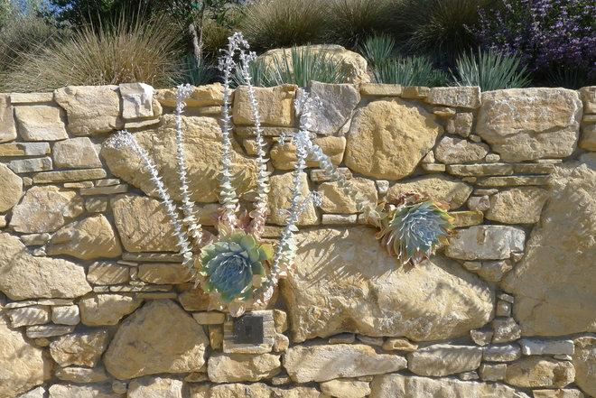 Mediterranean  by Jeffrey Gordon Smith Landscape Architecture