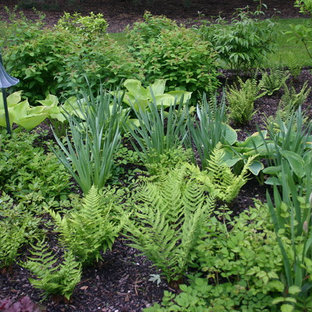 Design ideas for a traditional landscaping in Chicago.