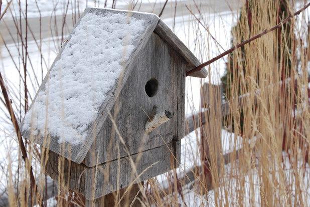 v gel f ttern im winter vogelh uschen silos und co. Black Bedroom Furniture Sets. Home Design Ideas