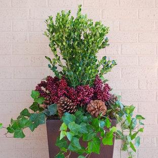 Idee per un giardino in inverno