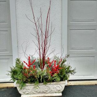 Idee per un piccolo giardino chic davanti casa in inverno con un giardino in vaso