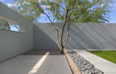 Modern Garden Designs for Modern Homes
