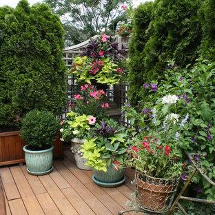 Wisteria & Rose roof deck designs. Visit www.wisteriaandrose.com for more info!