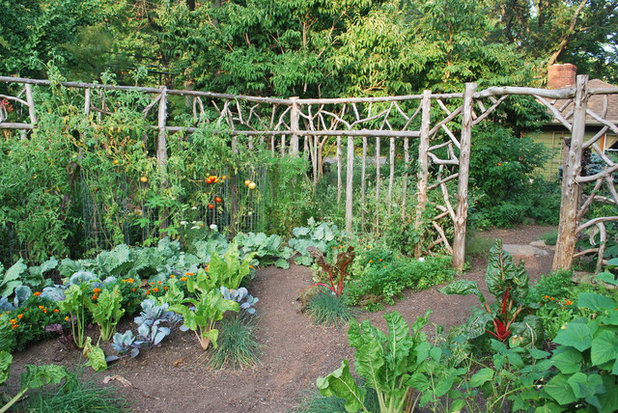 Have by Designs for Greener Gardens