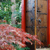 Houzz TV: 77 Gorgeous Garden Gates