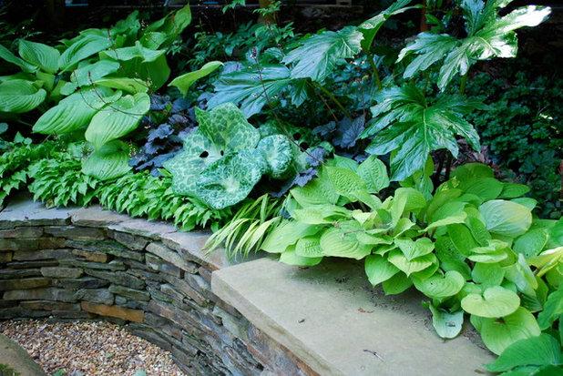 トラディショナル 庭 by Jay Sifford Garden Design