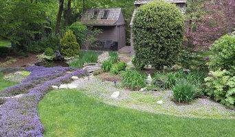 Woodland garden upgrade
