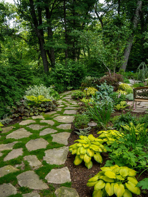 Traditional Landscape Ideas, Designs, Remodels & Photos