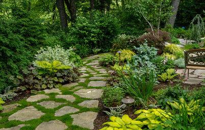 Upptäck vackra trädgårdar där det aldrig blommar