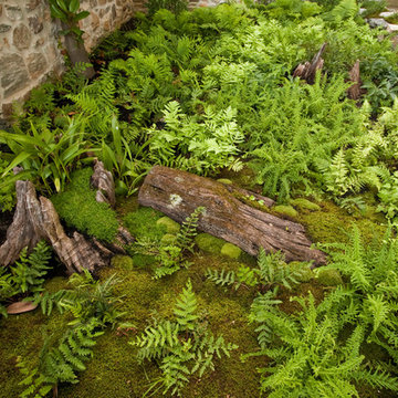 Woodland Twist to A Front Entrance Garden