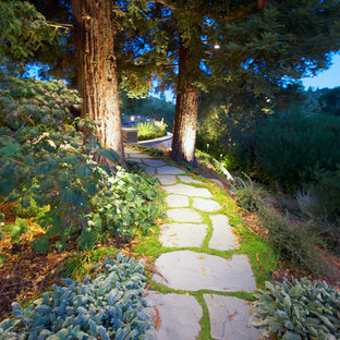 This is an example of a mid-sized traditional backyard stone landscaping in San Francisco.