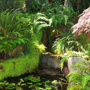 Design ideas for an eclectic water fountain landscape in San Francisco.