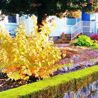Esempio di un giardino xeriscape american style di medie dimensioni in inverno con un ingresso o sentiero e pavimentazioni in pietra naturale