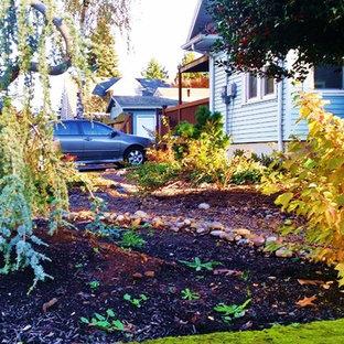 Ispirazione per un giardino xeriscape american style di medie dimensioni in inverno con un ingresso o sentiero e pavimentazioni in pietra naturale