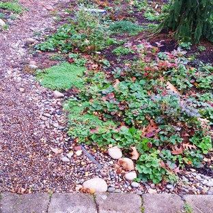 Ispirazione per un giardino xeriscape stile americano di medie dimensioni in inverno con un ingresso o sentiero e pavimentazioni in pietra naturale