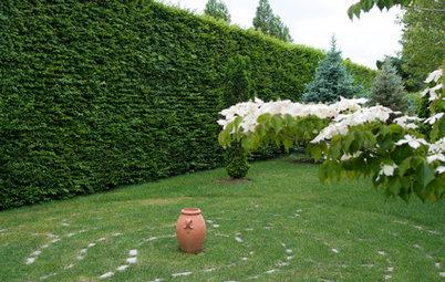 conseils de pro pour transformer votre jardin en prairie fleurie. Black Bedroom Furniture Sets. Home Design Ideas