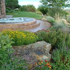Traditional Landscape by Lifescape Colorado.