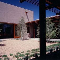 Modern Landscape by Denman and Associates