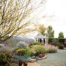 Backyard Slope Landscape