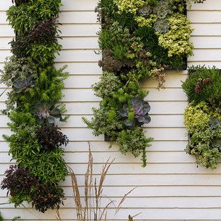 This is an example of a medium sized contemporary side garden in Portland Maine with a living wall and brick paving.
