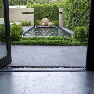 Cette image montre un jardin arrière design avec des pavés en pierre naturelle.