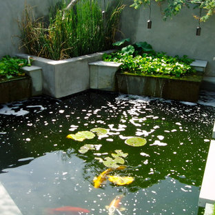 Design ideas for a mid-sized contemporary backyard concrete paver pond in San Diego.