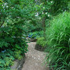 15 Ideas for a Stunning Garden Path