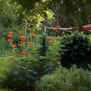 Jardin romantique Austin : Photos et idées déco de jardins