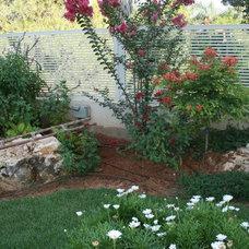 Modern Landscape Zis Residence