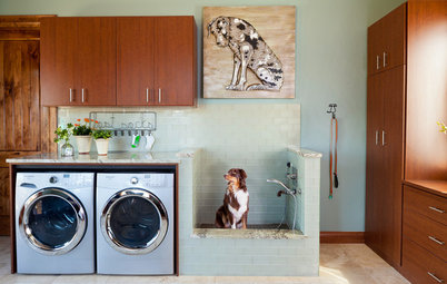 It's a Dog's World in These Hardworking Laundry Rooms