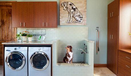 Insolite : Ces 13 aménagements américains ont du chien !