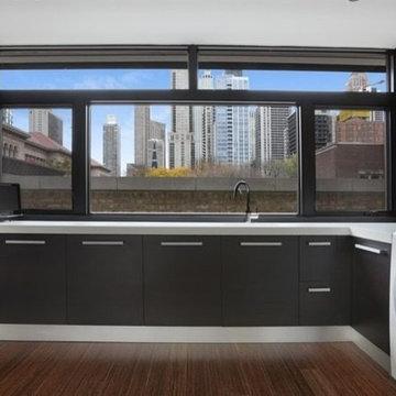 Chicago Renovation & Addition