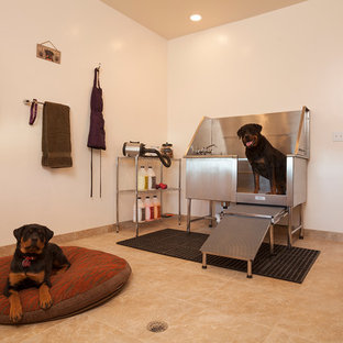 Photo of a large contemporary separated utility room in Denver with white walls and travertine flooring.