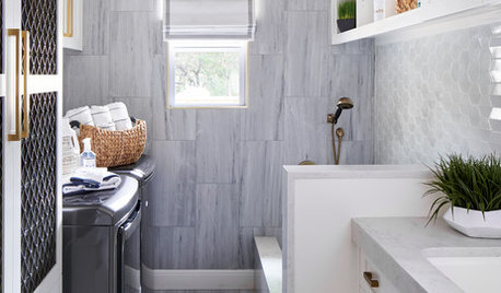 Stylish Laundry Room With a Dog Wash Station and a Drying Closet