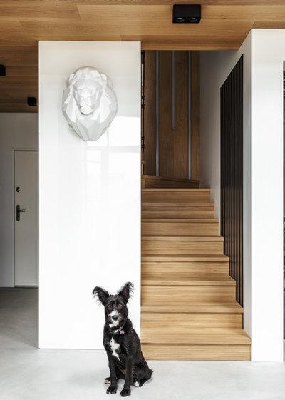 Contemporary Staircase by DesignRocks