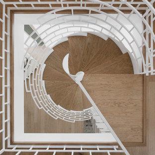 Неиссякаемый источник вдохновения для домашнего уюта: винтовая лестница в современном стиле с деревянными ступенями и металлическими перилами