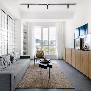 Неиссякаемый источник вдохновения для домашнего уюта: гостиная комната среднего размера в современном стиле с белыми стенами и серым полом без ТВ