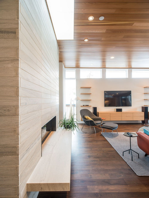 Houzz | Modern Living Room Design Ideas & Remodel Pictures