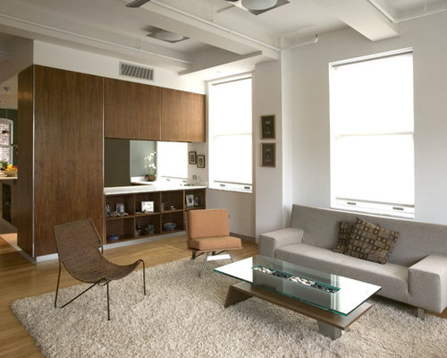 Contemporary Living Room Idea In New York With White Walls Part 46