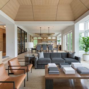 Idee per un ampio soggiorno minimalista aperto con pareti bianche, parquet chiaro, camino classico e cornice del camino in pietra